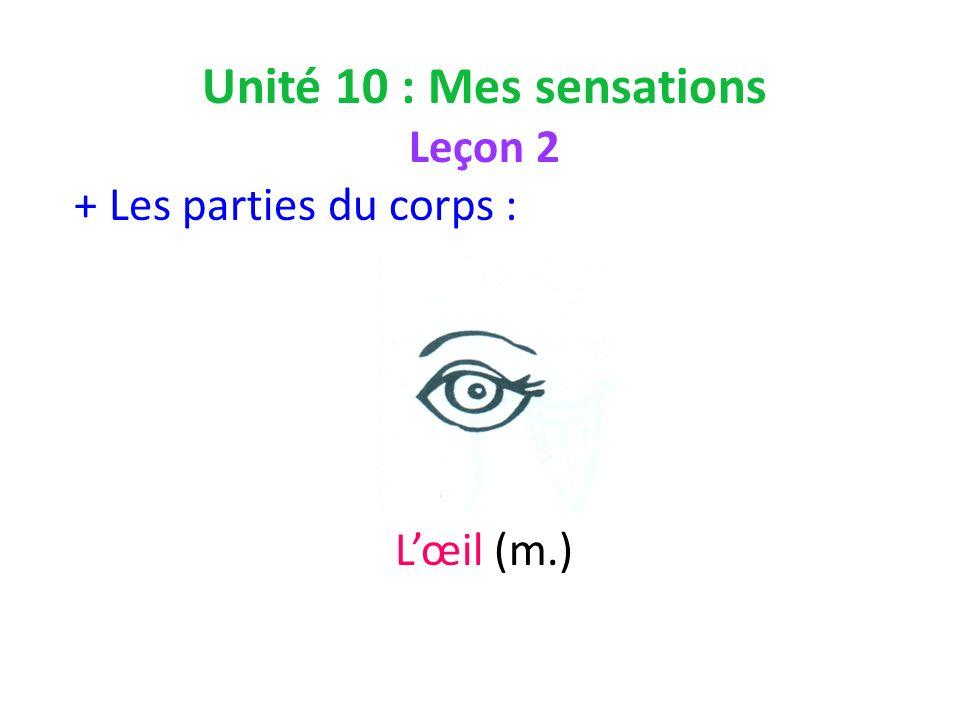 Unité 10 : Mes sensations Leçon 2 + Les parties du corps : Lœil (m.)