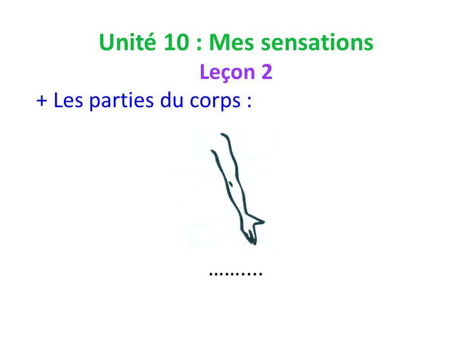 Unité 10 : Mes sensations Leçon 2 + Les parties du corps : ……....
