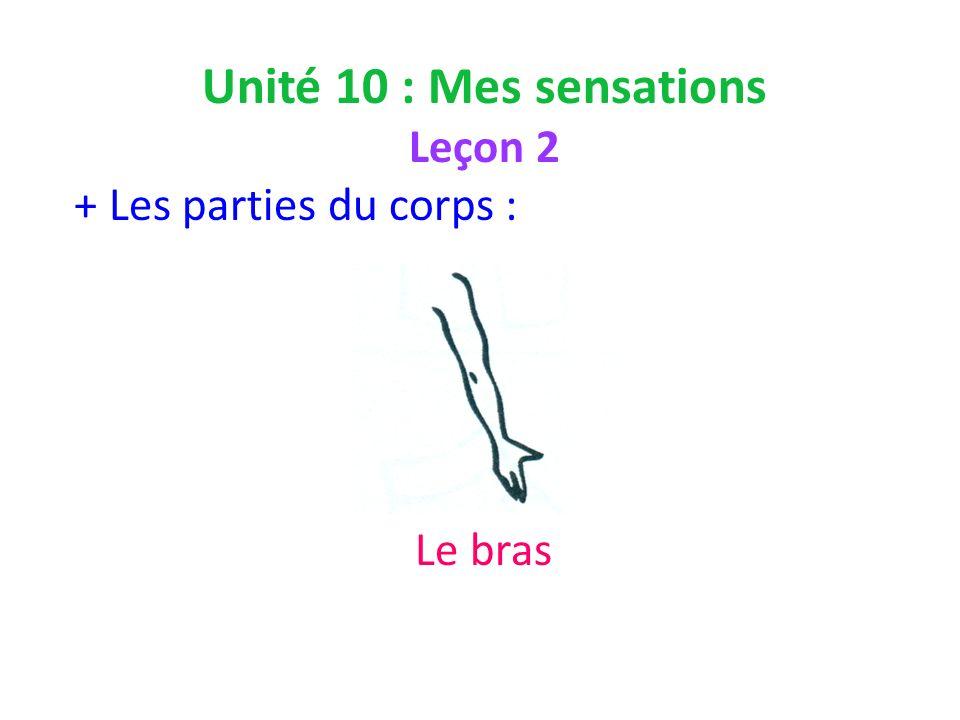 Unité 10 : Mes sensations Leçon 2 + Les parties du corps : Le bras