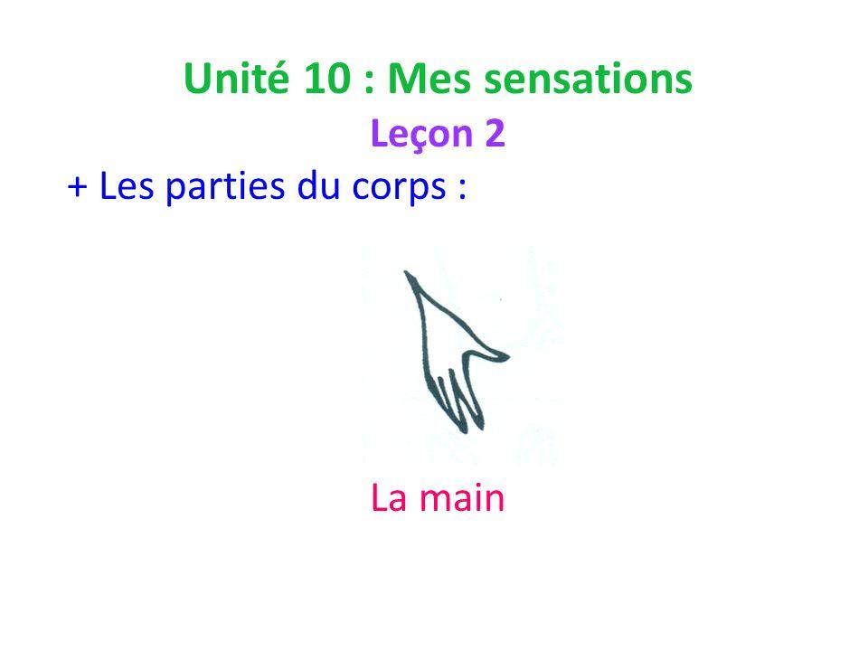 Unité 10 : Mes sensations Leçon 2 + Les parties du corps : La main