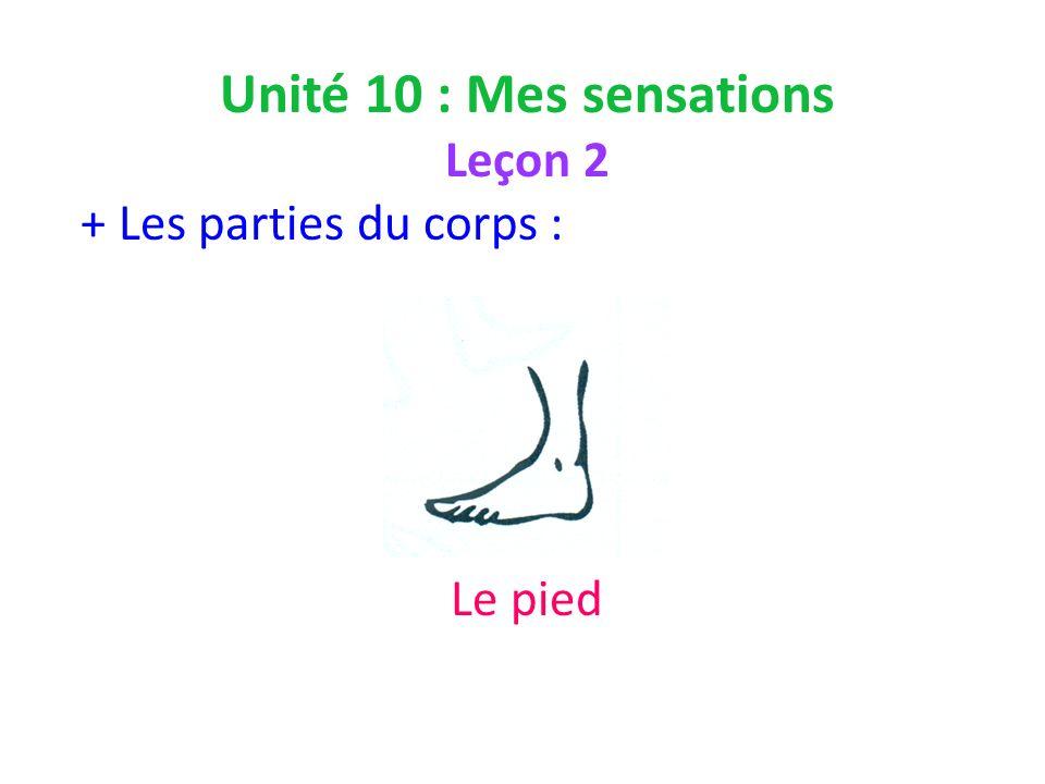 Unité 10 : Mes sensations Leçon 2 + Les parties du corps : Le pied