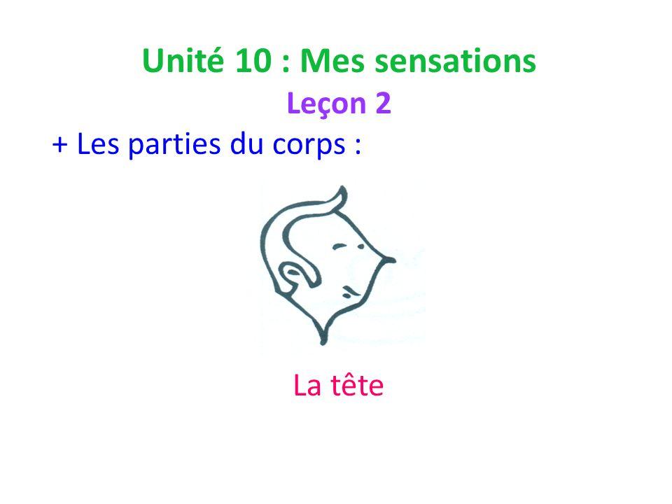 Unité 10 : Mes sensations Leçon 2 + Les parties du corps : La tête
