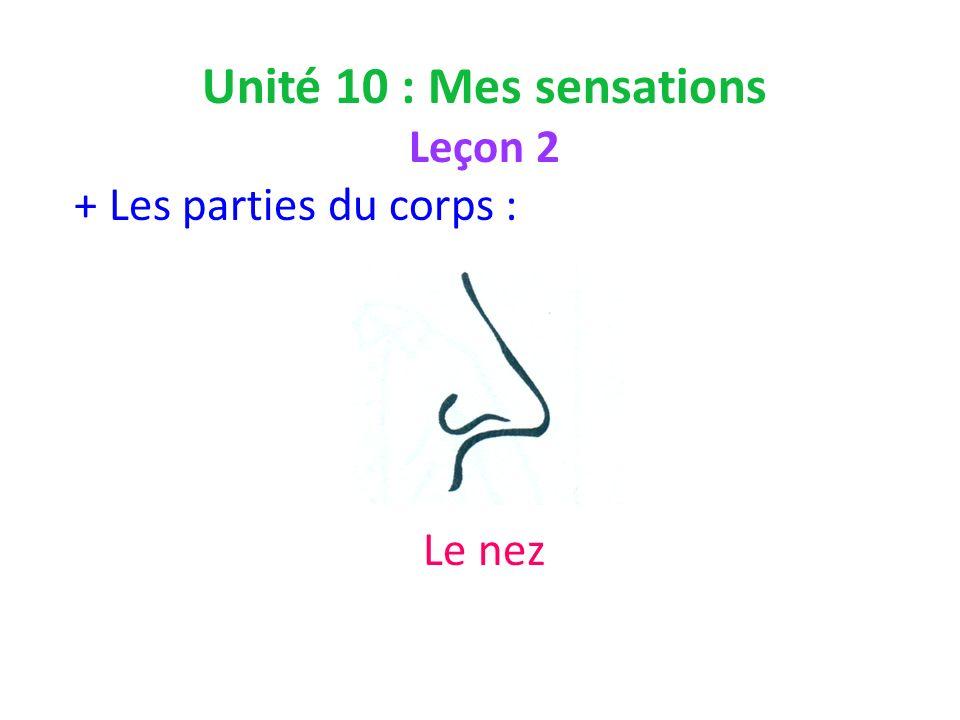 Unité 10 : Mes sensations Leçon 2 + Les parties du corps : Le nez
