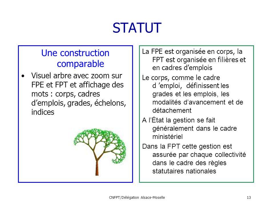 CNFPT/Délégation Alsace-Moselle13 STATUT Une construction comparable Visuel arbre avec zoom sur FPE et FPT et affichage des mots : corps, cadres dempl