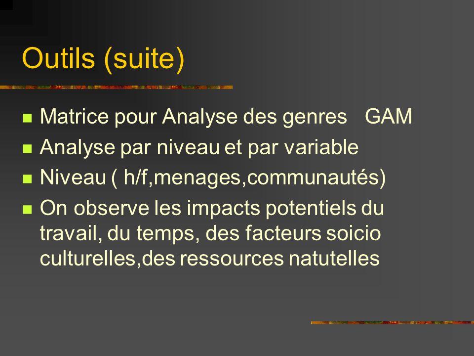 Outils (suite) Matrice pour Analyse des genres GAM Analyse par niveau et par variable Niveau ( h/f,menages,communautés) On observe les impacts potentiels du travail, du temps, des facteurs soicio culturelles,des ressources natutelles