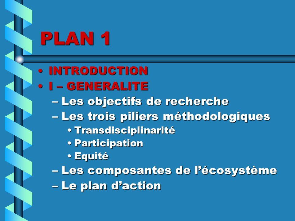 PLAN 1 INTRODUCTIONINTRODUCTION I – GENERALITEI – GENERALITE –Les objectifs de recherche –Les trois piliers méthodologiques TransdisciplinaritéTransdi