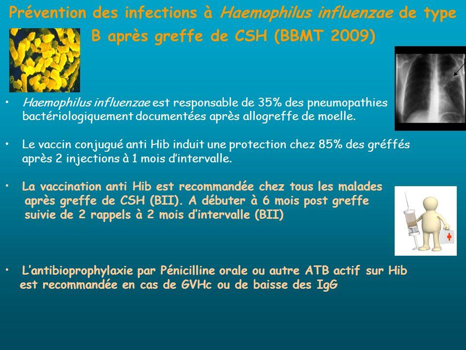 Prévention des infections à Haemophilus influenzae de type B après greffe de CSH (BBMT 2009) Haemophilus influenzae est responsable de 35% des pneumop