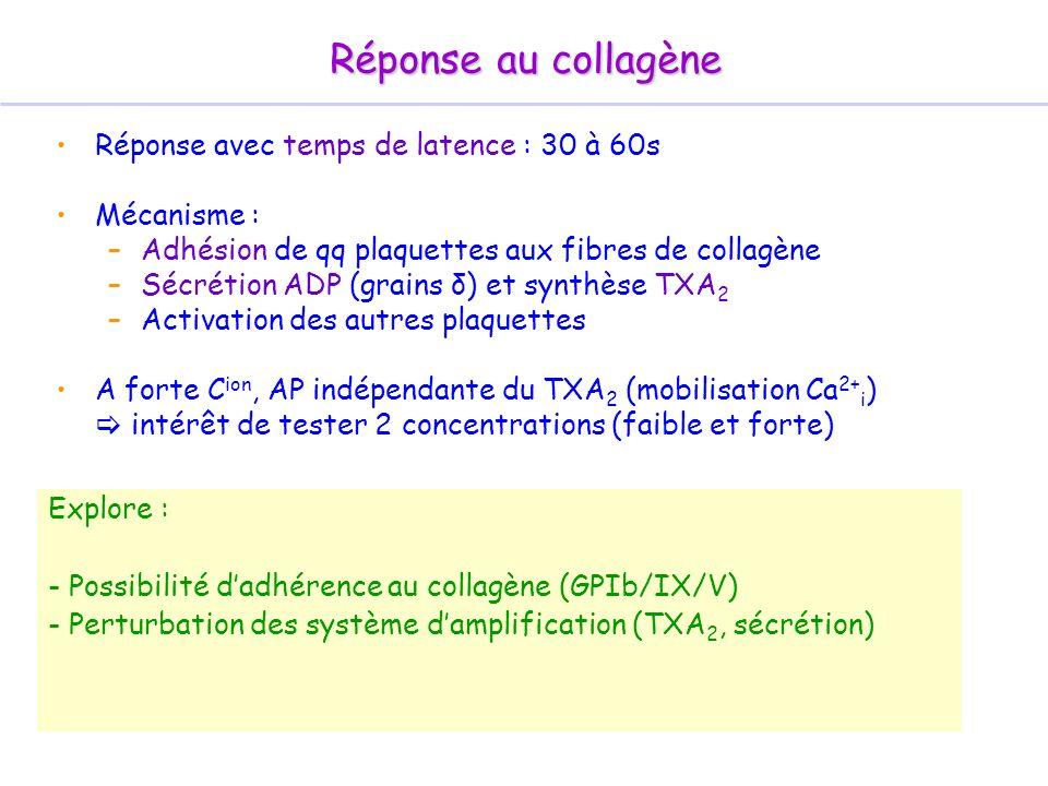 Réponse avec temps de latence : 30 à 60s Mécanisme : –Adhésion de qq plaquettes aux fibres de collagène –Sécrétion ADP (grains δ) et synthèse TXA 2 –A