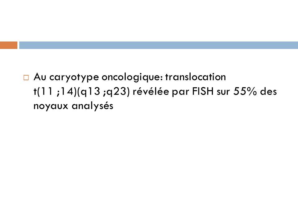Au caryotype oncologique: translocation t(11 ;14)(q13 ;q23) révélée par FISH sur 55% des noyaux analysés