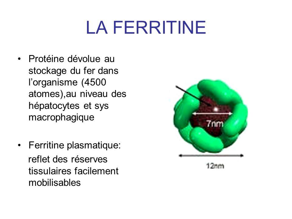 LA FERRITINE Protéine dévolue au stockage du fer dans lorganisme (4500 atomes),au niveau des hépatocytes et sys macrophagique Ferritine plasmatique: reflet des réserves tissulaires facilement mobilisables