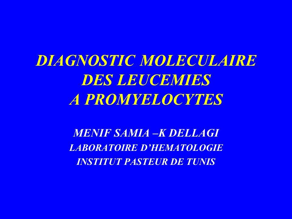 REMANIEMENT DU GENE RARA 17q21 Translocations chromosomiques PML en 15q 22 (95 %) Gènes de fusion : PML-RARA sur 15q + Autres partenaires: PLZF en 11q23 NPM en 5q35 Numa en 11q13 Stat 5 en 17q21