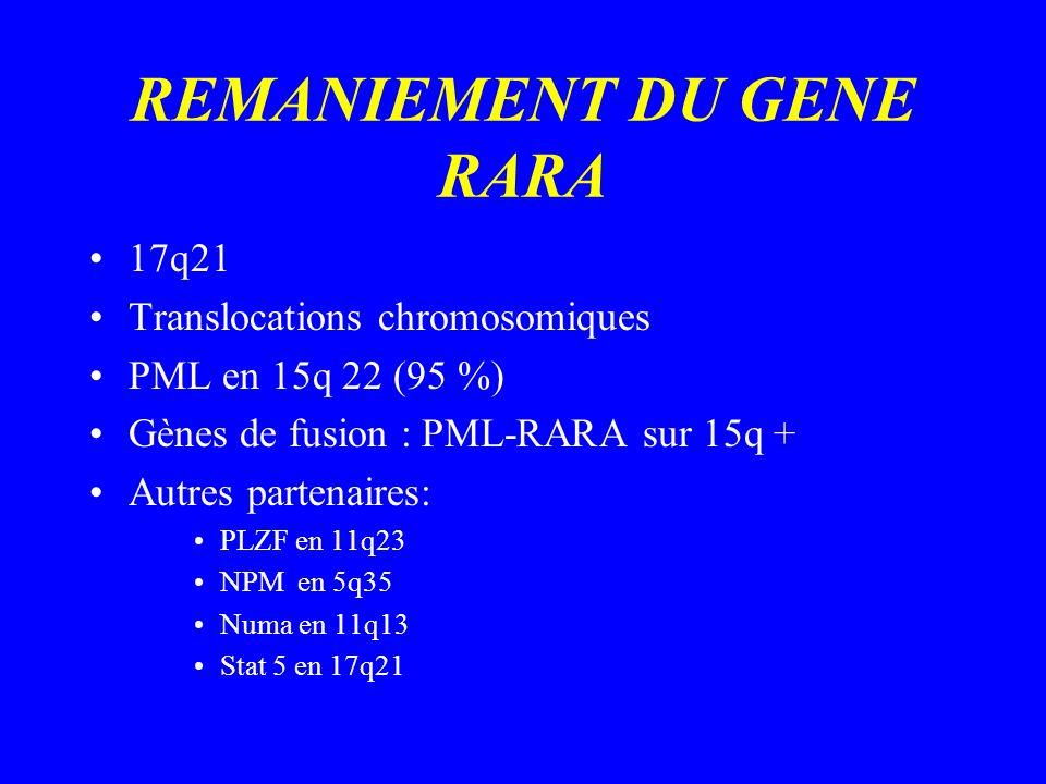 REMANIEMENT DU GENE RARA 17q21 Translocations chromosomiques PML en 15q 22 (95 %) Gènes de fusion : PML-RARA sur 15q + Autres partenaires: PLZF en 11q