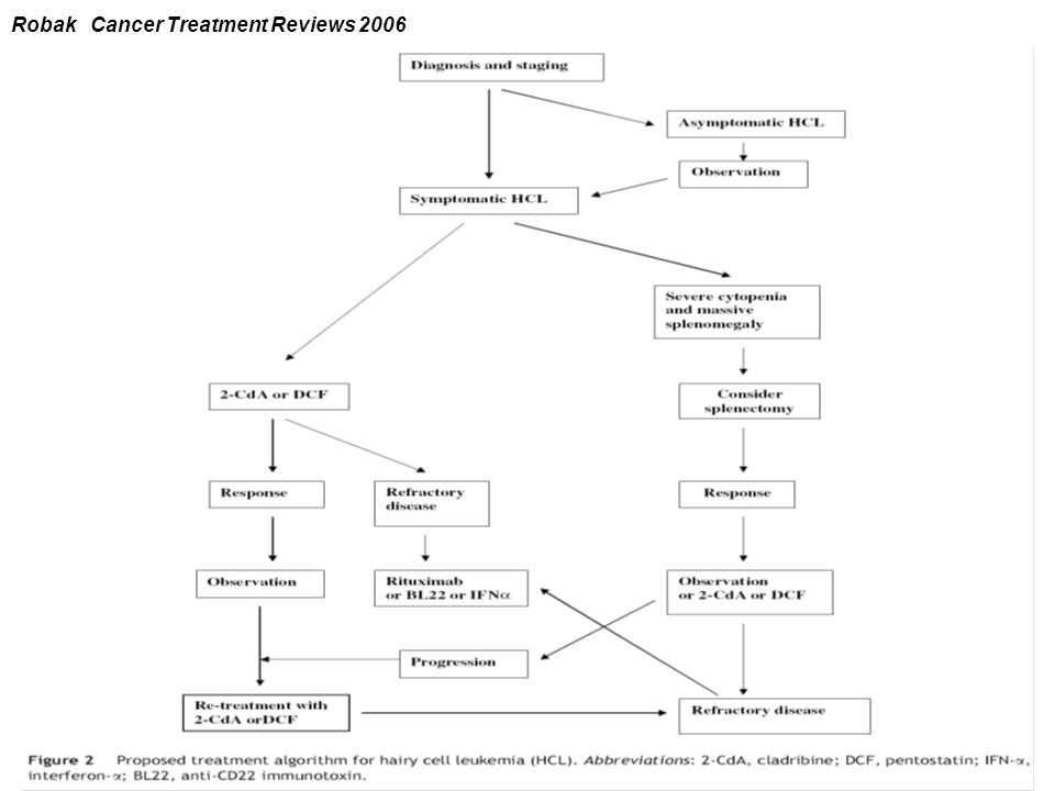 Robak Cancer Treatment Reviews 2006