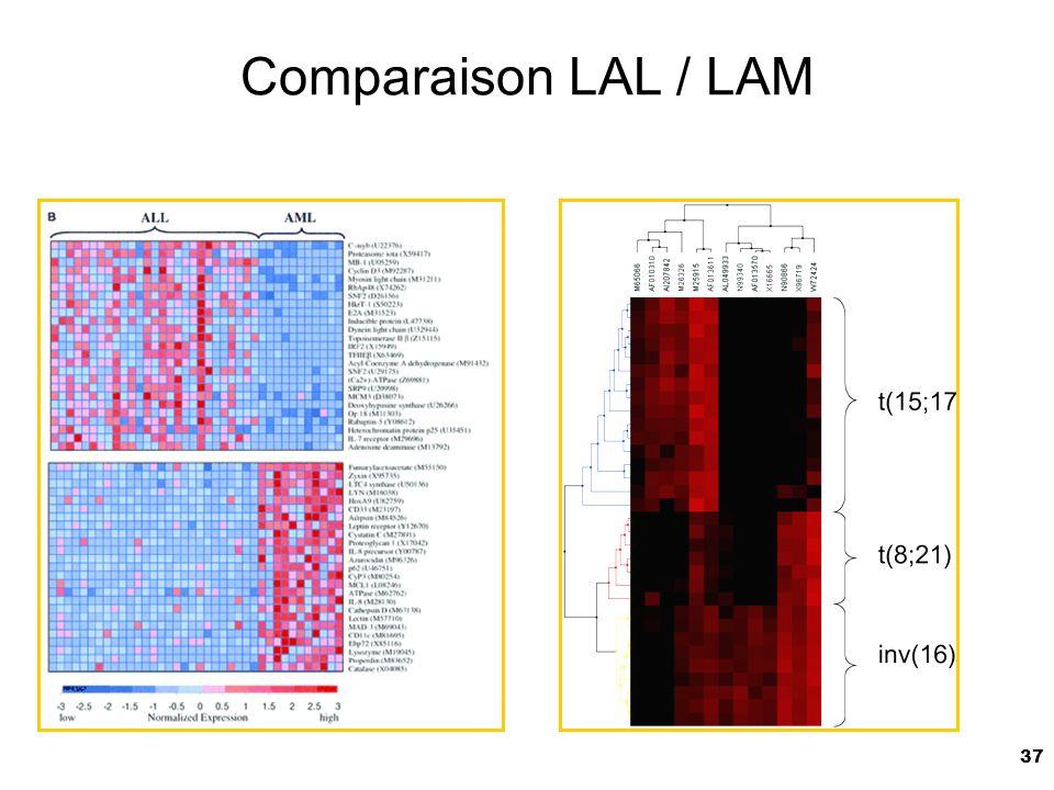 37 Comparaison LAL / LAM