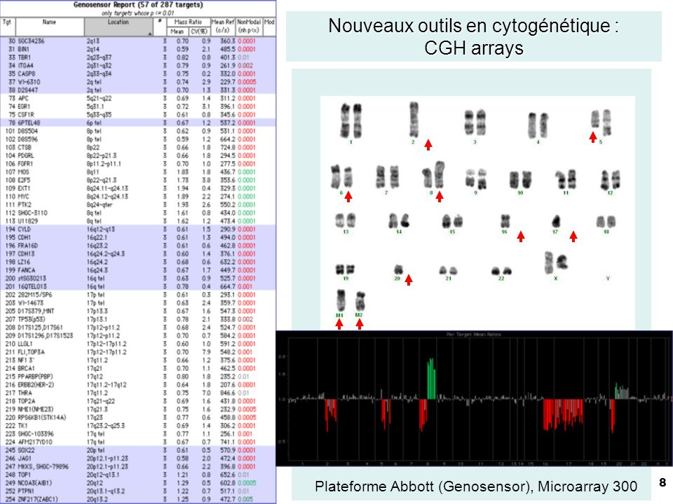 8 Nouveaux outils en cytogénétique : CGH arrays Plateforme Abbott (Genosensor), Microarray 300