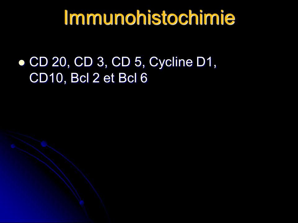 Immunohistochimie CD 20, CD 3, CD 5, Cycline D1, CD10, Bcl 2 et Bcl 6 CD 20, CD 3, CD 5, Cycline D1, CD10, Bcl 2 et Bcl 6