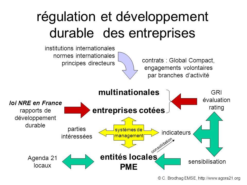 régulation et développement durable des entreprises institutions internationales normes internationales principes directeurs multinationales contrats