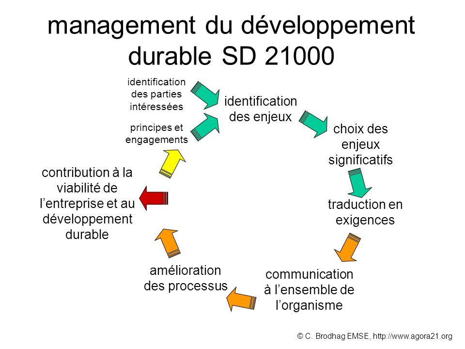 management du développement durable SD 21000 identification des enjeux choix des enjeux significatifs identification des parties intéressées principes et engagements © C.