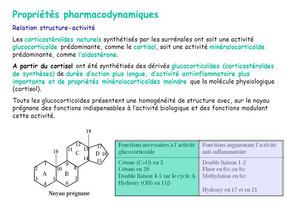 Propriétés pharmacodynamiques Relation structure-activité Les corticostéroïdes naturels synthétisés par les surrénales ont soit une activité glucocort