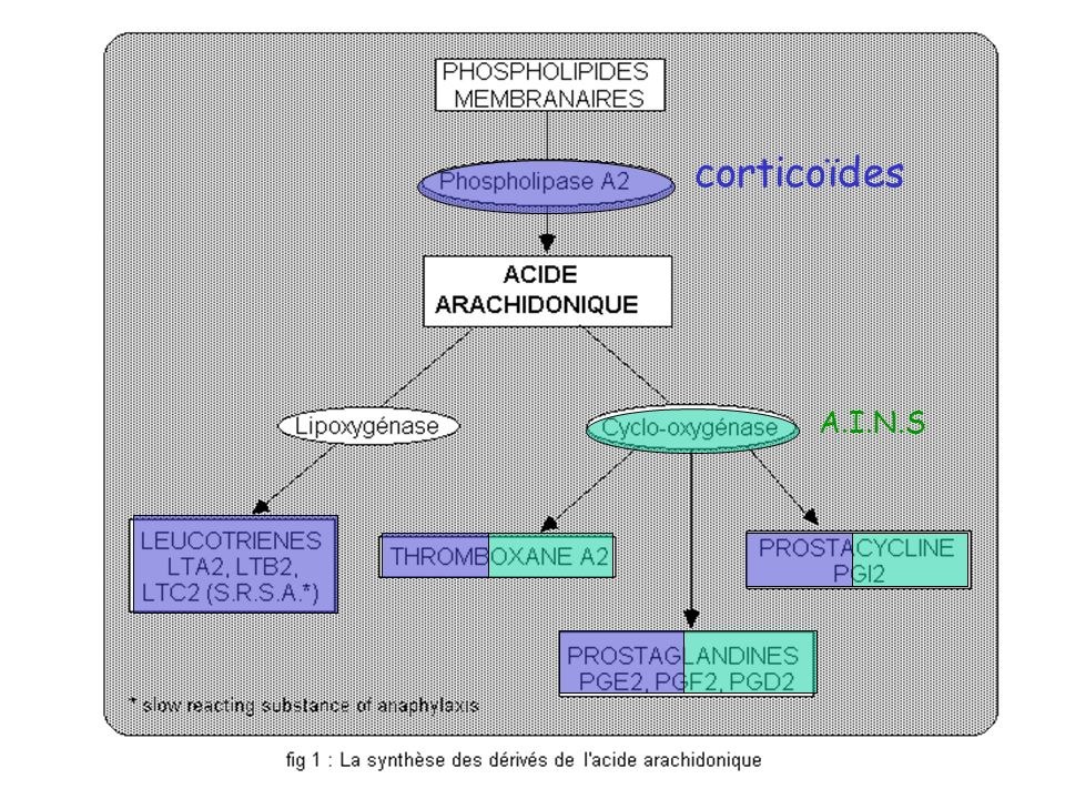 corticoïdes A.I.N.S