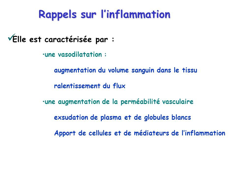 Rappels sur linflammation Elle est caractérisée par : une vasodilatation : augmentation du volume sanguin dans le tissu ralentissement du flux une aug