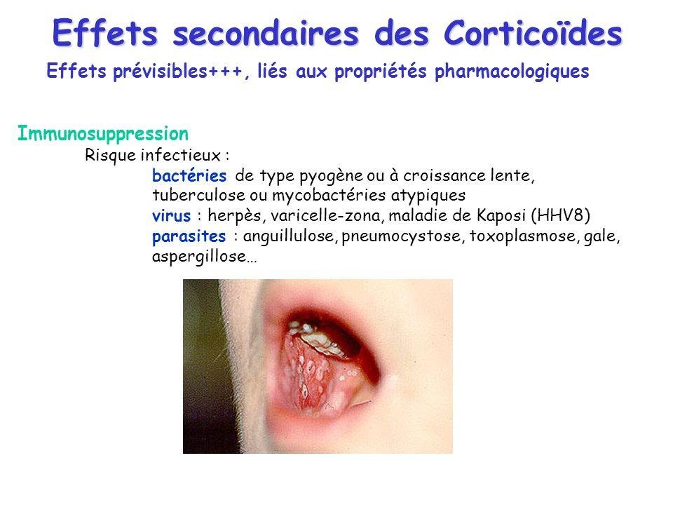 Effets secondaires des Corticoïdes Effets prévisibles+++, liés aux propriétés pharmacologiques Immunosuppression Risque infectieux : bactéries de type