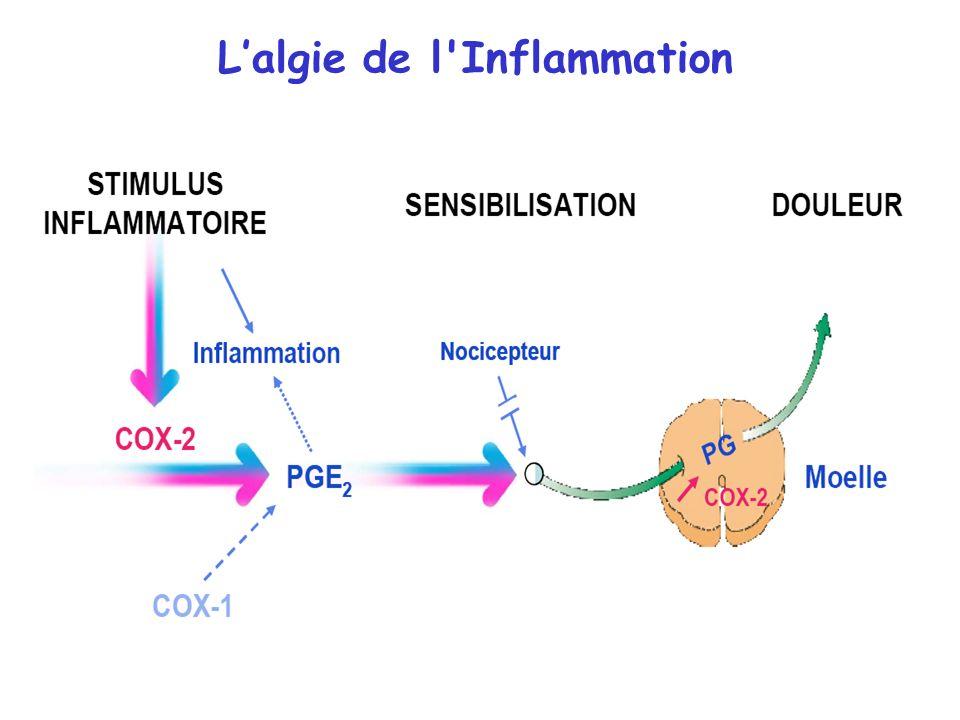 Lalgie de l'Inflammation