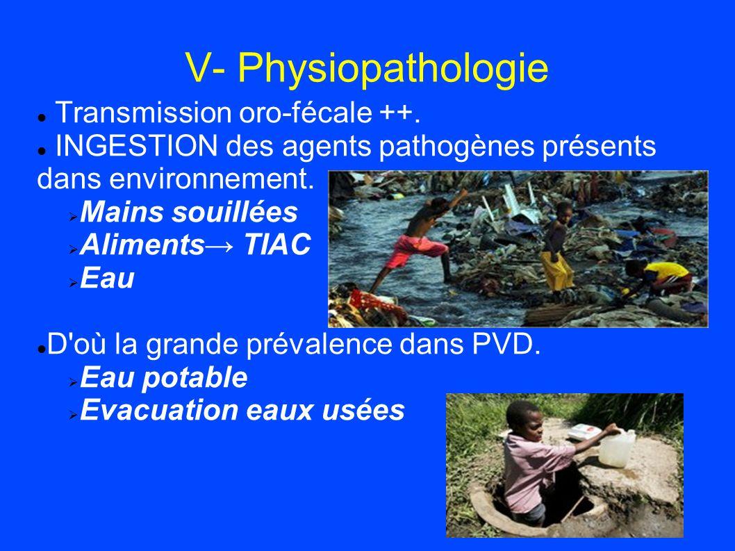 V- Physiopathologie Transmission oro-fécale ++. INGESTION des agents pathogènes présents dans environnement. Mains souillées Aliments TIAC Eau D'où la