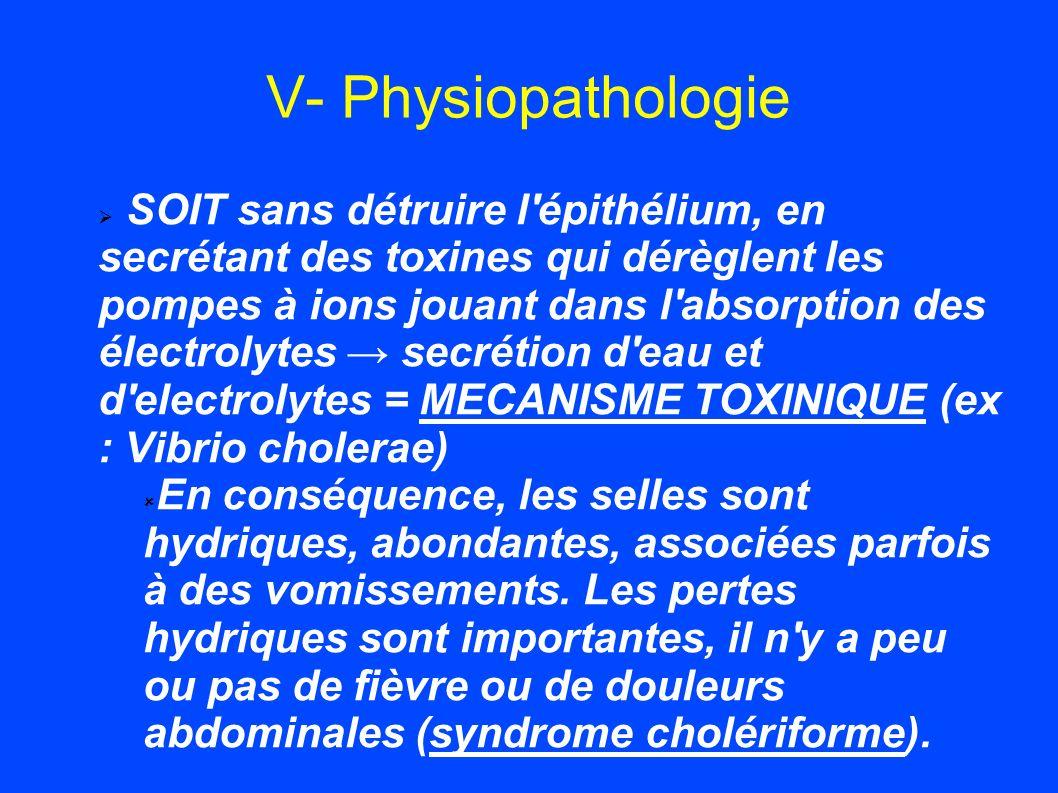 V- Physiopathologie SOIT sans détruire l'épithélium, en secrétant des toxines qui dérèglent les pompes à ions jouant dans l'absorption des électrolyte