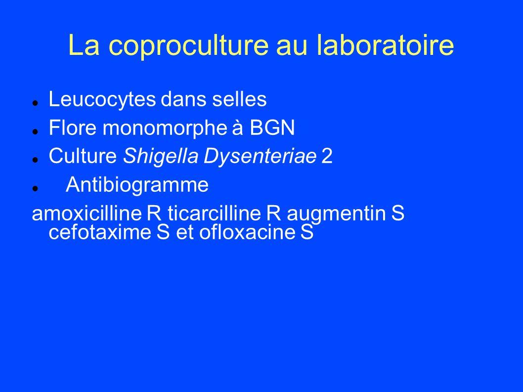 La coproculture au laboratoire Leucocytes dans selles Flore monomorphe à BGN Culture Shigella Dysenteriae 2 Antibiogramme amoxicilline R ticarcilline
