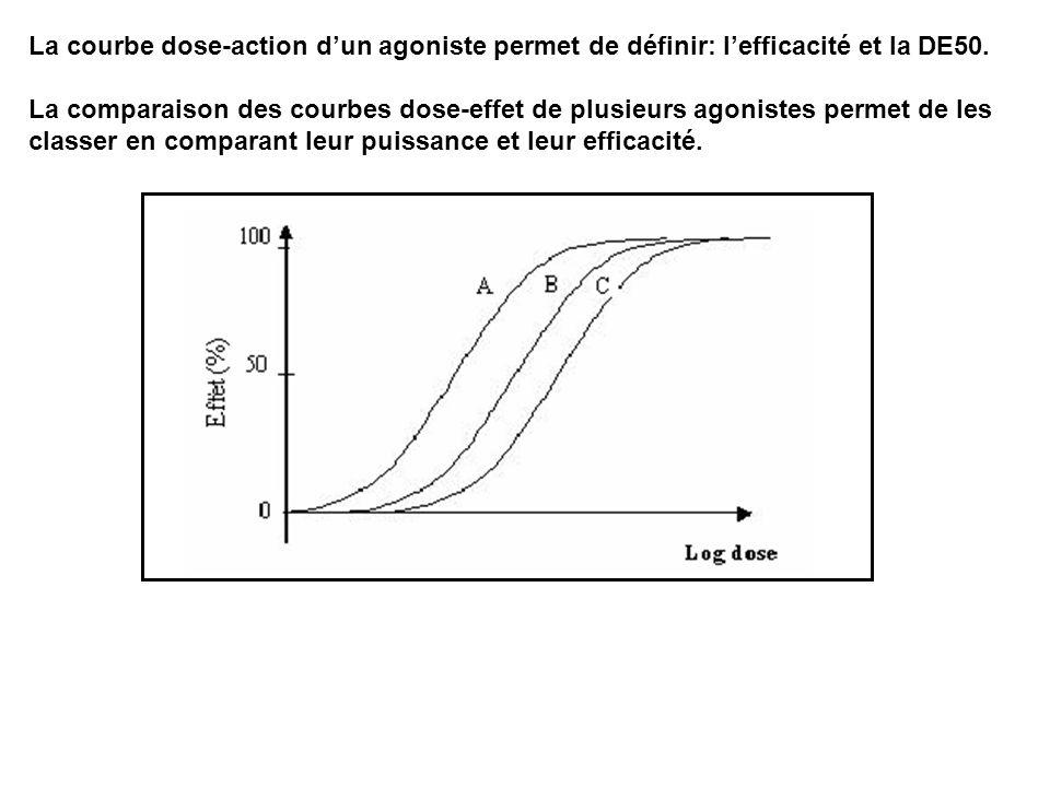 La courbe dose-action dun agoniste permet de définir: lefficacité et la DE50. La comparaison des courbes dose-effet de plusieurs agonistes permet de l