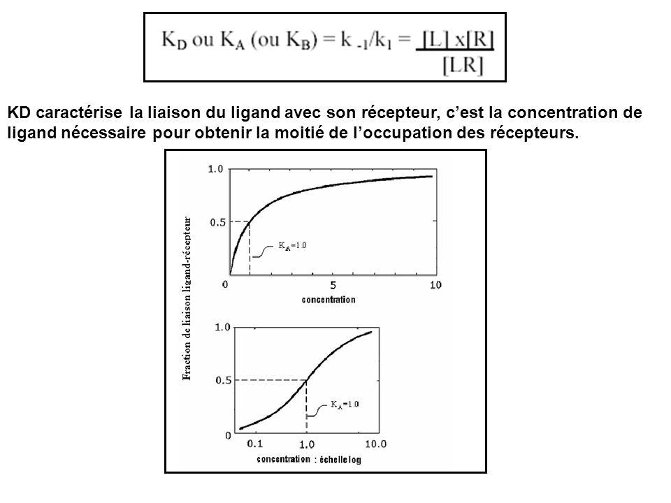 KD caractérise la liaison du ligand avec son récepteur, cest la concentration de ligand nécessaire pour obtenir la moitié de loccupation des récepteur