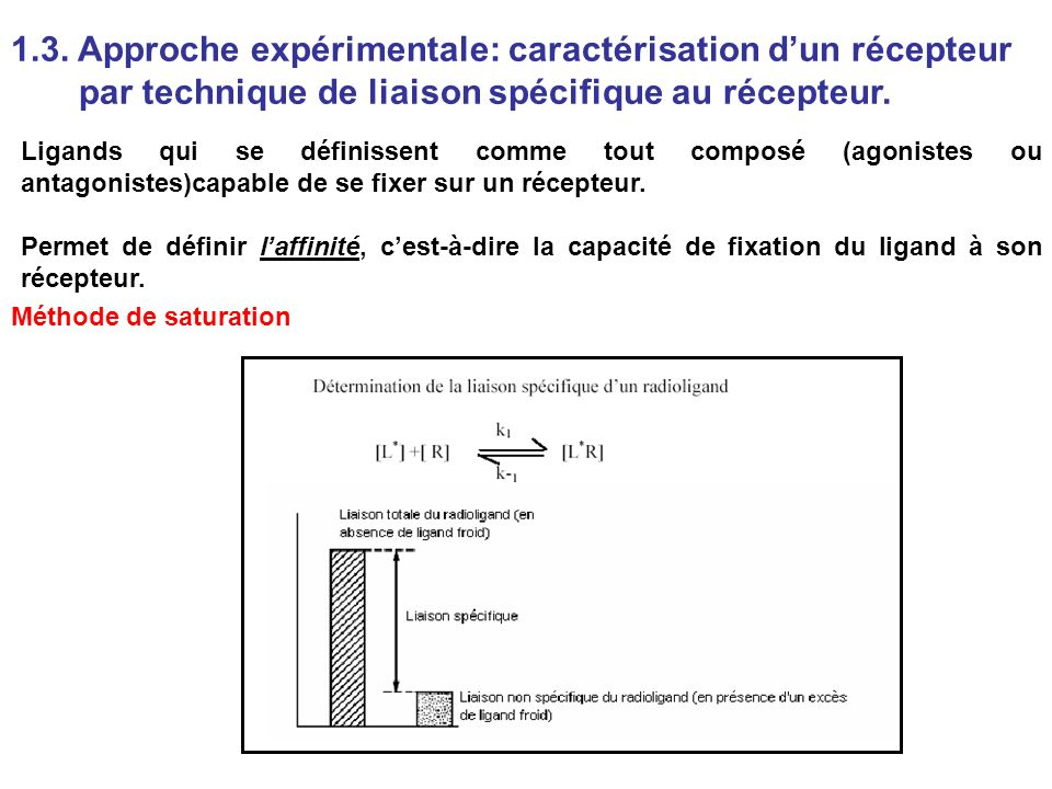 1.3. Approche expérimentale: caractérisation dun récepteur par technique de liaison spécifique au récepteur. Ligands qui se définissent comme tout com