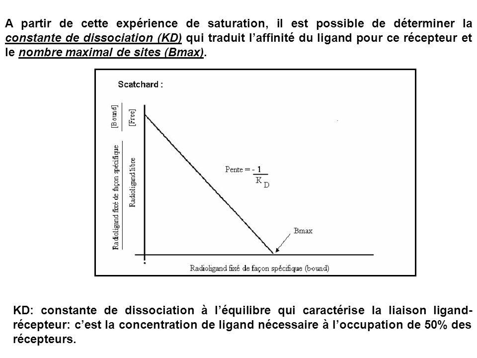 A partir de cette expérience de saturation, il est possible de déterminer la constante de dissociation (KD) qui traduit laffinité du ligand pour ce ré