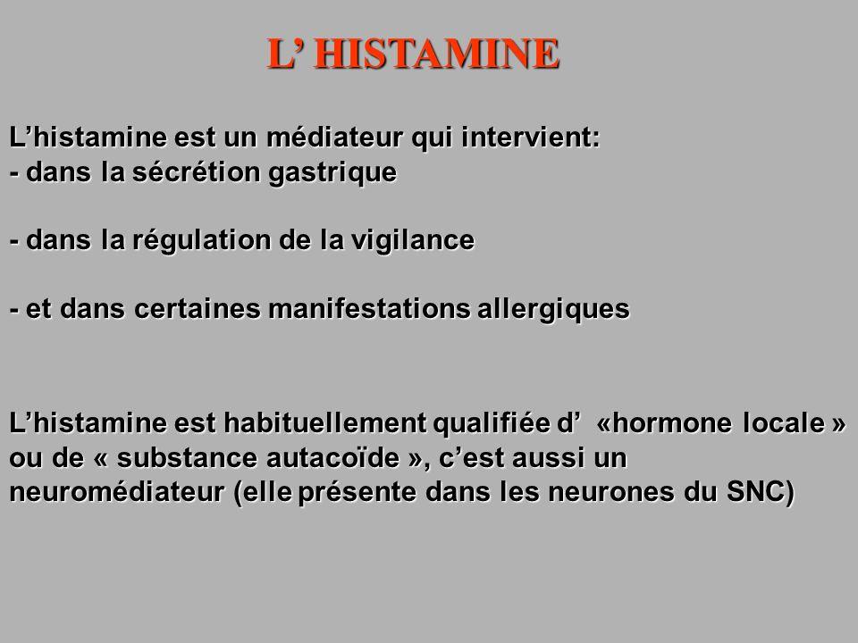 L HISTAMINE Lhistamine est un médiateur qui intervient: - dans la sécrétion gastrique - dans la régulation de la vigilance - et dans certaines manifes