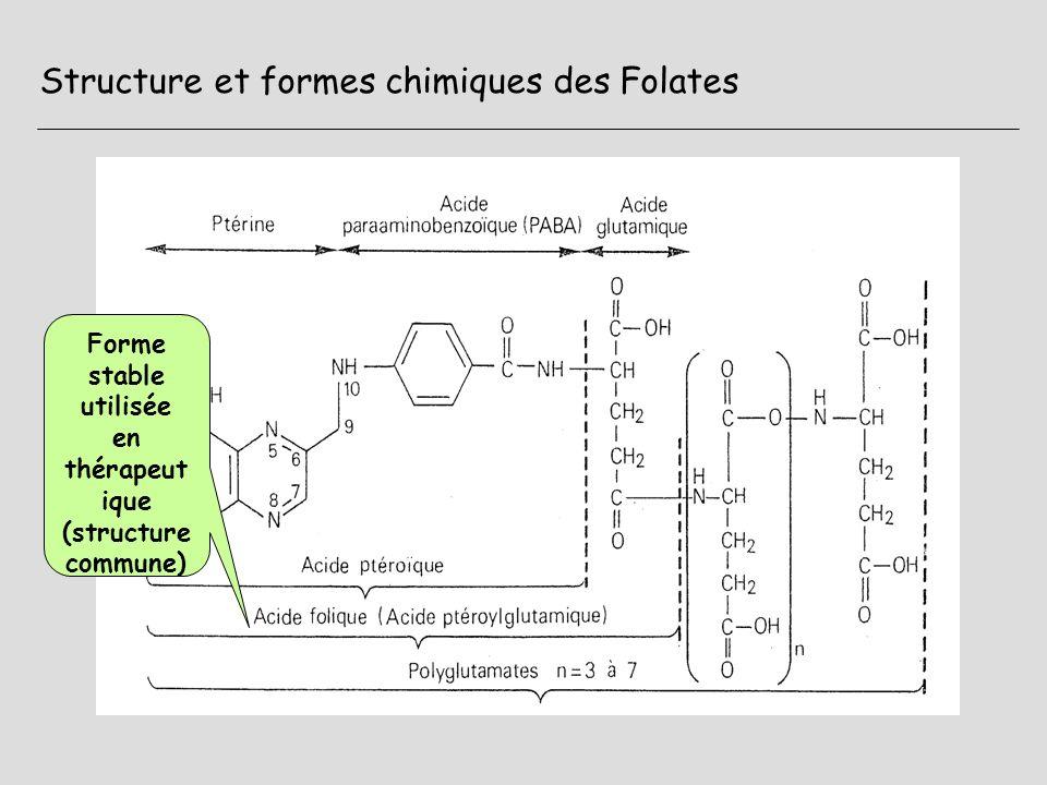 Structure et formes chimiques des Folates Formes actives (coenzymes) réduites (H en 5-6 : DHF 5-6-7-8 : THF Fixation en N5 dun groupement carboné : (Méthyl, formyl) Polyglutamates = formes alimentaires et formes tissulaires Entre N5 et N10 = méthylene