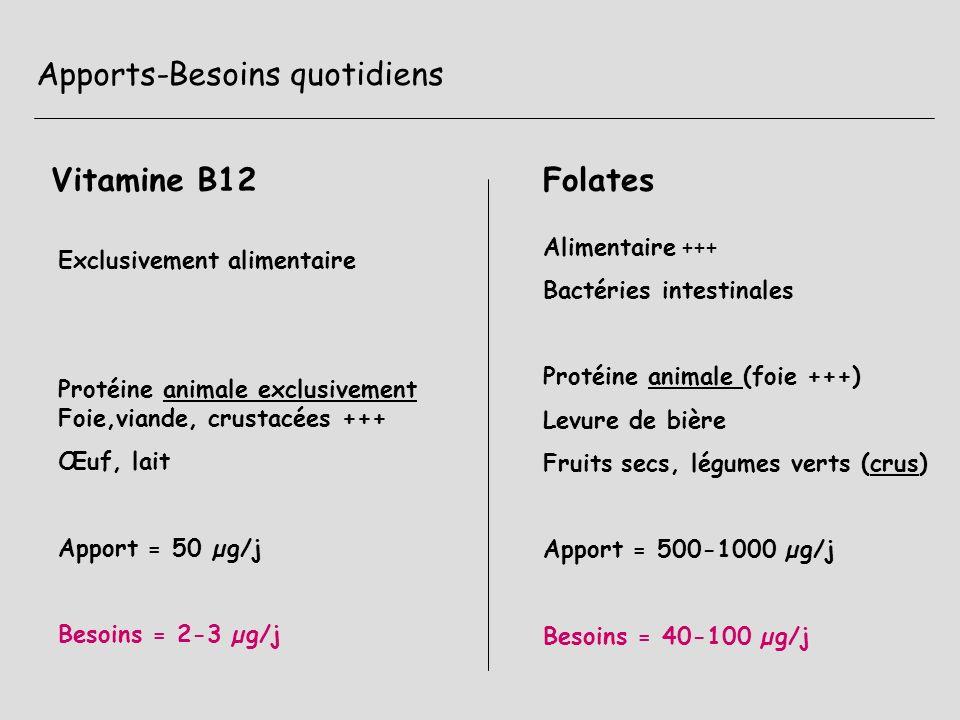 Apports-Besoins quotidiens Vitamine B12Folates Exclusivement alimentaire Protéine animale exclusivement Foie,viande, crustacées +++ Œuf, lait Apport =