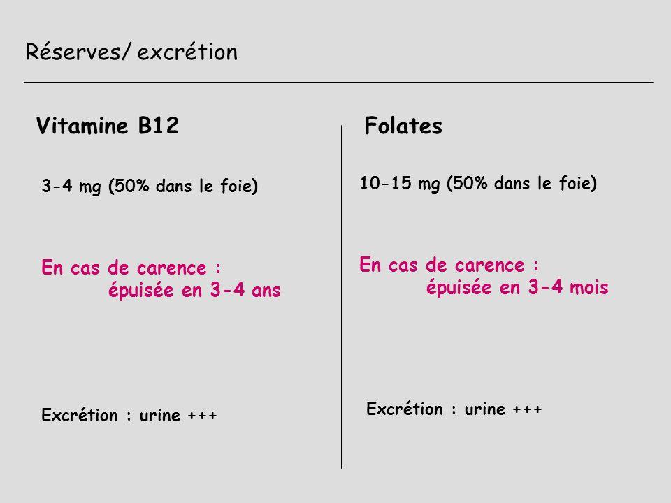 Exploration 1- mise en évidence de la conséquence sur lhématopoïèse hémogramme -> VGM > 100 fl myélogramme (après dosage et avant transfusion) 2- mise en évidence directe de la carence : dosage sanguin de la vit B12 dosage intraerythrocytaire des folates 3- mise en évidence indirecte par études des conséquences métaboliques ex : test de dU suppression 5- tests dabsorption : ex test de Schilling