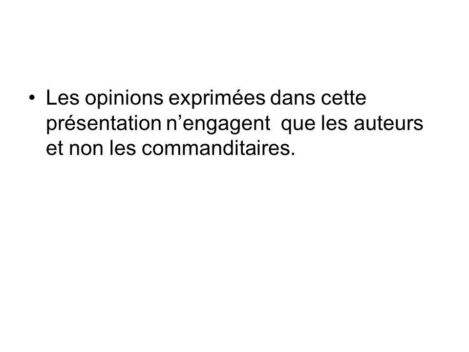 Les opinions exprimées dans cette présentation nengagent que les auteurs et non les commanditaires.