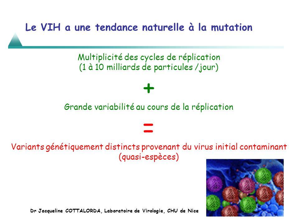 Le VIH a une tendance naturelle à la mutation Multiplicité des cycles de réplication (1 à 10 milliards de particules /jour) + Grande variabilité au co