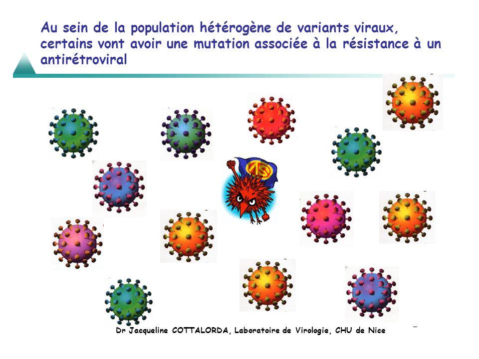 Au sein de la population hétérogène de variants viraux, certains vont avoir une mutation associée à la résistance à un antirétroviral Dr Jacqueline CO