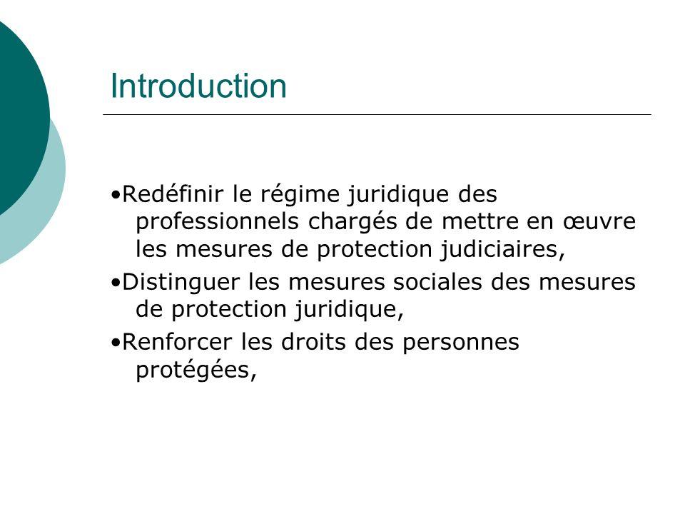 Introduction Redéfinir le régime juridique des professionnels chargés de mettre en œuvre les mesures de protection judiciaires, Distinguer les mesures