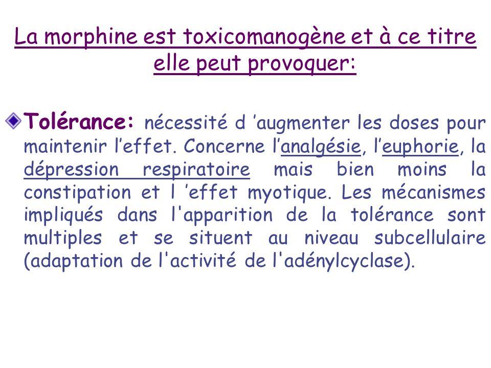 La morphine est toxicomanogène et à ce titre elle peut provoquer: Tolérance: nécessité d augmenter les doses pour maintenir leffet. Concerne lanalgési