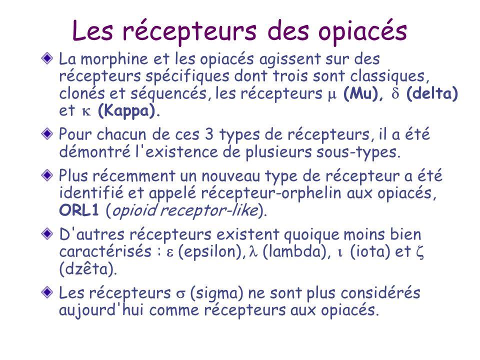 Les récepteurs des opiacés La morphine et les opiacés agissent sur des récepteurs spécifiques dont trois sont classiques, clonés et séquencés, les réc