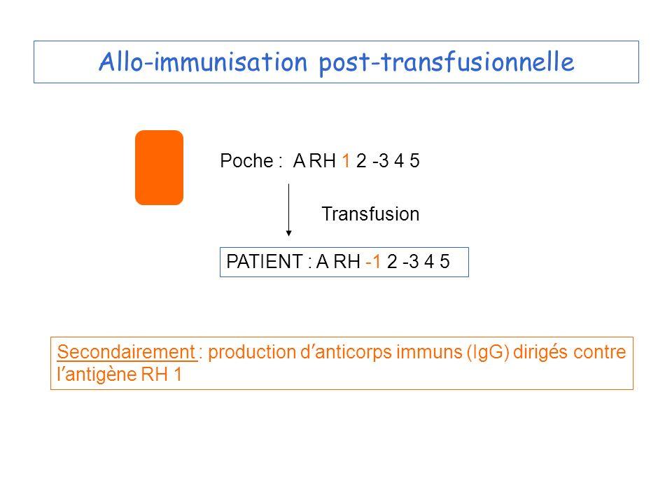 Allo-immunisation post-transfusionnelle Poche : A RH 1 2 -3 4 5 PATIENT : A RH -1 2 -3 4 5 Transfusion Secondairement : production d anticorps immuns (IgG) dirig é s contre l antig è ne RH 1