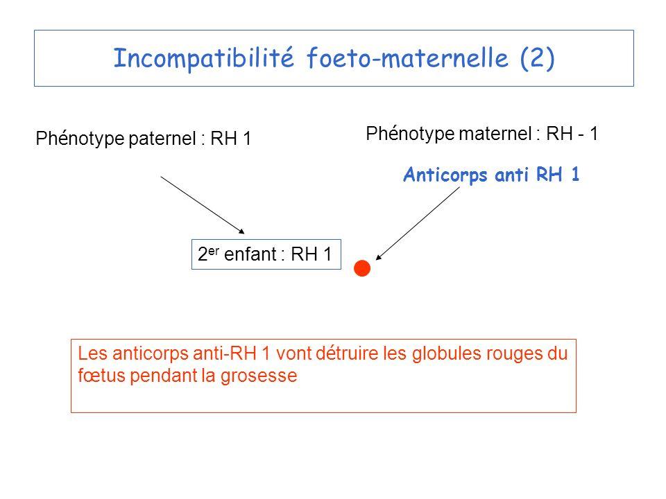 Incompatibilité foeto-maternelle (2) Ph é notype paternel : RH 1 Ph é notype maternel : RH - 1 2 er enfant : RH 1 Les anticorps anti-RH 1 vont d é truire les globules rouges du f œ tus pendant la grosesse Anticorps anti RH 1
