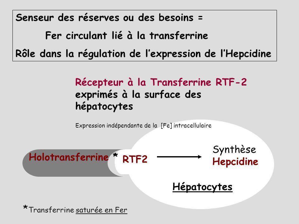 Synthèse hépatique