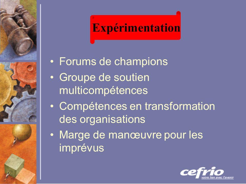 Forums de champions Groupe de soutien multicompétences Compétences en transformation des organisations Marge de manœuvre pour les imprévus Expérimentation