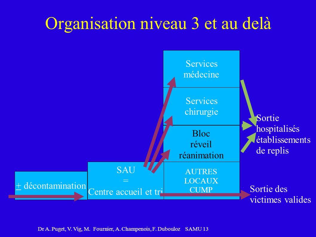 Dr A. Puget, V. Vig, M. Fournier, A. Champenois, F. Dubouloz SAMU 13 Organisation niveau 3 et au delà Services médecine Services chirurgie Bloc réveil