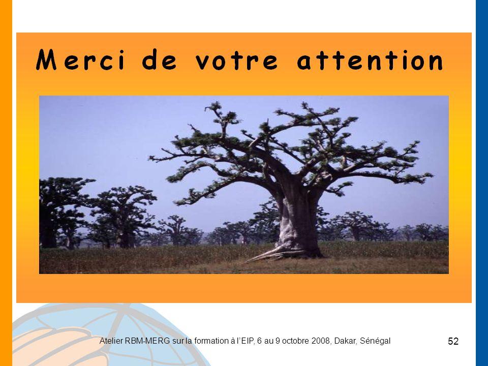 Atelier RBM-MERG sur la formation à lEIP, 6 au 9 octobre 2008, Dakar, Sénégal 52